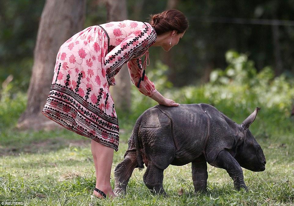 英国王子和凯特王妃在访问印度阿萨姆邦加济兰加国家公园动物避难所时