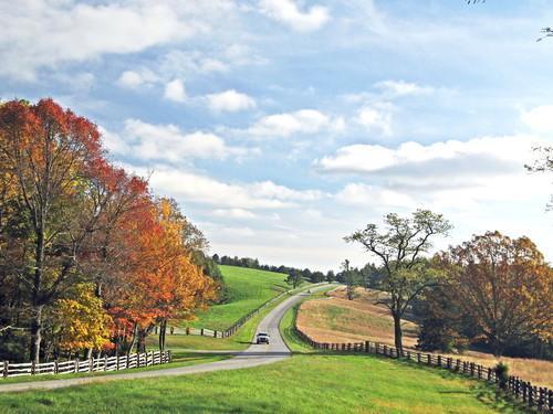 9. 蓝岭风景区干道,弗吉尼亚和北卡罗莱纳