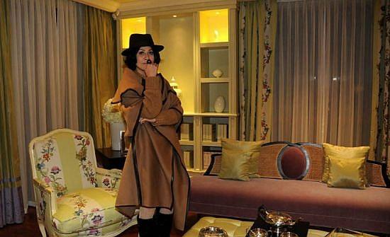 刘嘉玲豪宅内景图片_刘嘉玲是有名的富婆炒房赚过很多钱,编辑独家整理刘嘉玲豪宅内景