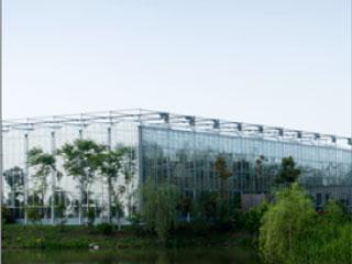 水景生态餐厅