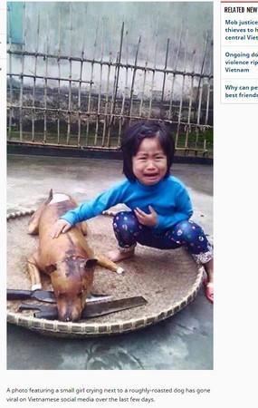 """越南女童爱犬走失,几日后在狗肉摊看到,一眼认出痛喊""""那是花花""""。(网络图)"""