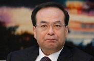 孙政才称重庆将依法调查处理涉不雅视频官员