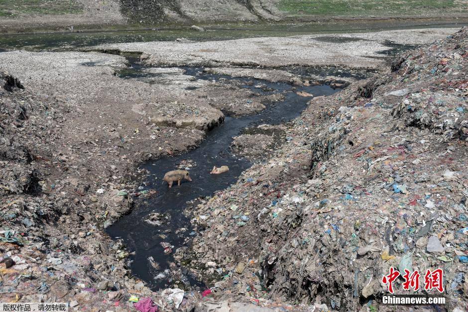 印度恒河遭严重污染 垃圾泛滥触目惊心_频道_凤凰网