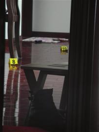 房产为抢绝技持刀弑母杀妹案发后自行v房产_凤后男子视频二图片