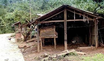 泰国最穷农村房 简陋让人心酸 但比中国农村好