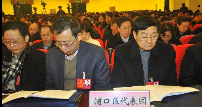 南京市十五届人大二次会议的各代表团