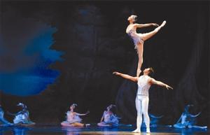 日本全稞芭蕾tt天鹅湖