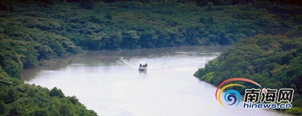 """海口东寨港红树林景区按五星级打造 """"五一""""前免费"""