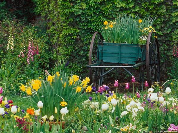 香味:有什么比蔷薇、茉莉、瑞香、迷迭香或丁香的花香更好呢?在窗口及室外座椅旁种植一些具有香味的植物。应为每个季节都准备一些香花植物。
