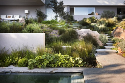 质感:平滑的、粗糙的,柔软的、多刺的、有光泽的或有绒毛的。尽量采用高对比度将精致混以粗犷,柔软配以粗硬。植物的叶片、花朵、茎干及硬质的造园材料都有其特殊的质感。