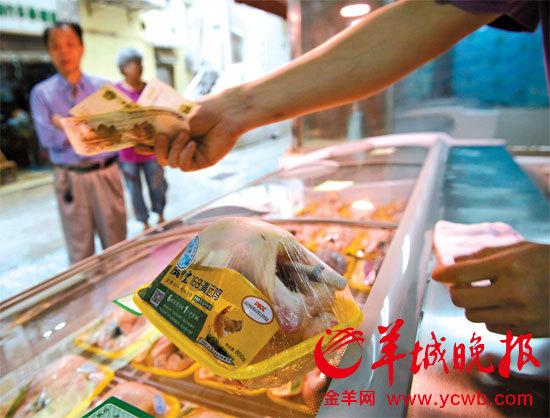 广州正式试点开售冰鲜鸡 八成档口今早未开市图片