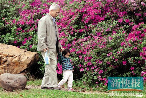 杜鹃花开了. 新快报记者 王飞/摄-今天上班, 让我们放慢脚步赏赏花