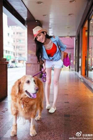 明星与宠物:吴佩慈与男友因狗复合舒淇借猫传情
