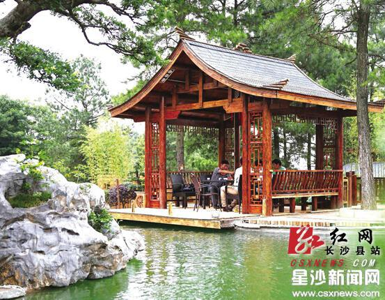 打造园林景观,展示农耕文化为核心的锦绣江南.曾诗怡 摄