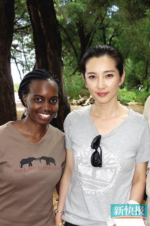 在中国,篮球运动员姚明,演员李冰冰也参与了大象的保护,两人都给