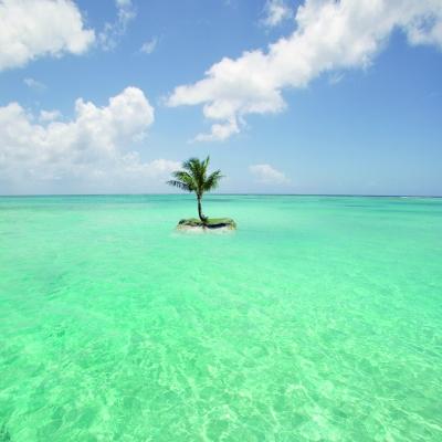 北马里亚纳群岛 三主岛争奇斗艳