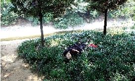 郑州一患抑郁症男子割腕自杀 热心市民求助挽救一命