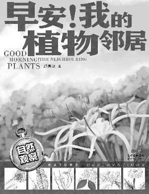 在家门口认识植物