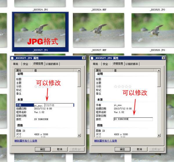【转载】  给你拍摄的数码照片标记版权信息 - 金源 - 金源影窗