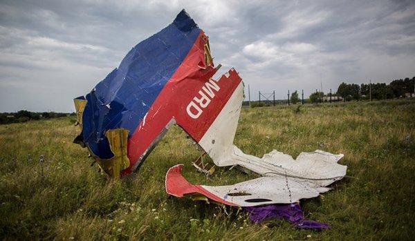 荷外长:mh17乘客有时间戴氧气罩 并非瞬间死亡 飞机