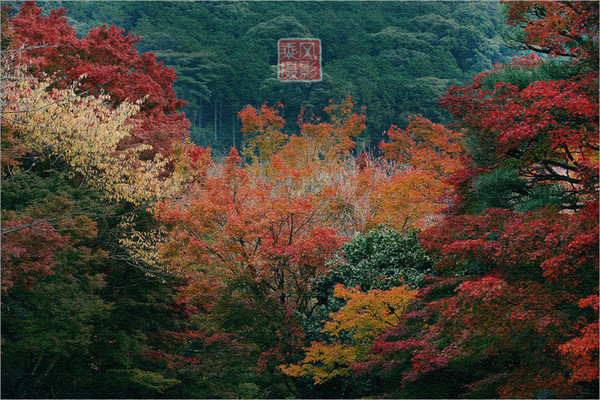 行摄东瀛:本州岛和服 女人 秋 - 闲云野鹤 - 闲云野鹤的博客