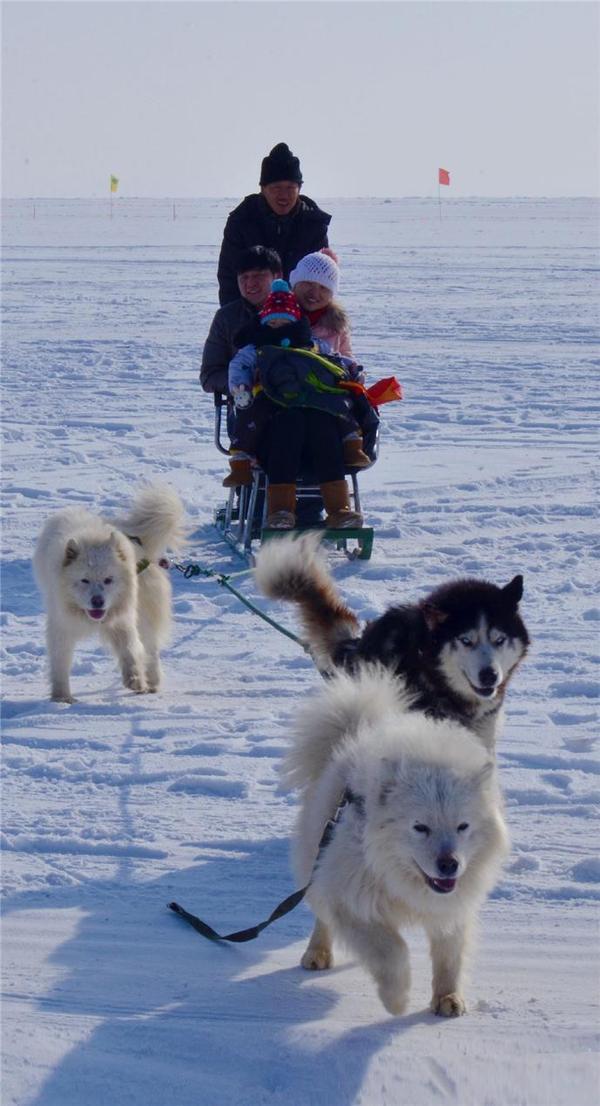 游客在冰上感受乐趣