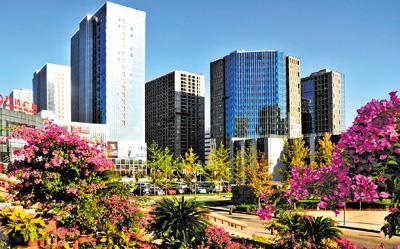 创新城市管理 展现宜居新貌