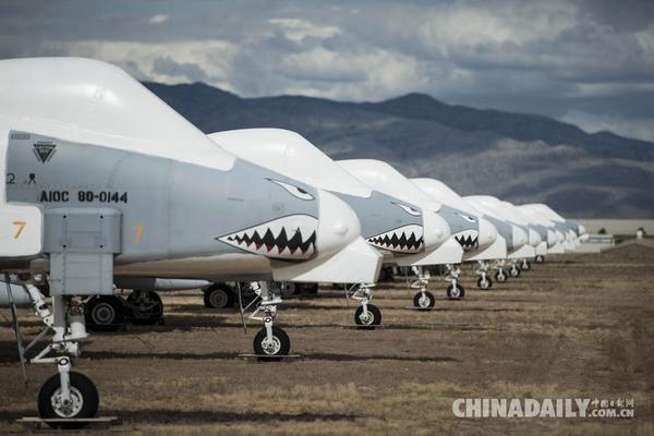 5月13日,A-10雷电攻击机停放在美国亚利桑那州图森市美军戴维斯蒙森空军基地的退役飞机墓地。新华社/法新 美军戴维斯蒙森空军基地的退役飞机墓地占地面积约10.5平方公里,相当于1430个足球场大小,被认为是世界最大军用飞机墓地,也是美国唯一一处退役飞机安置场所。超过4000架退役飞机躺在这里,几乎包括第二次世界大战后美军所有军用飞机机型,所有陈列飞机总价值在350亿美元左右。