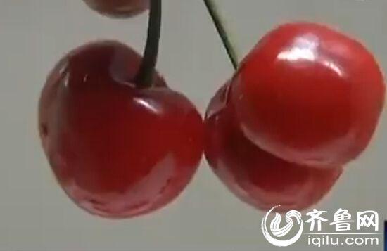 现在正是樱桃上市的旺季。(视频截图)