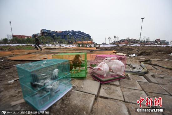 天津爆炸遇难者升至123人 氰化物超标211倍(图)
