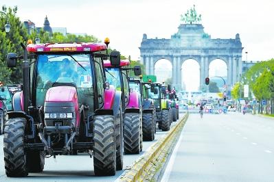 欧洲农民为什么不高兴图片
