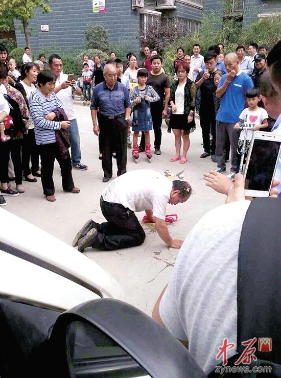 老人儿子跪在地上网友图片