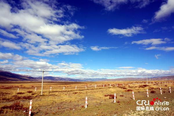 滚动新闻  国际在线报道(记者 孙清):甘孜藏族自治区理塘县是土地沙化