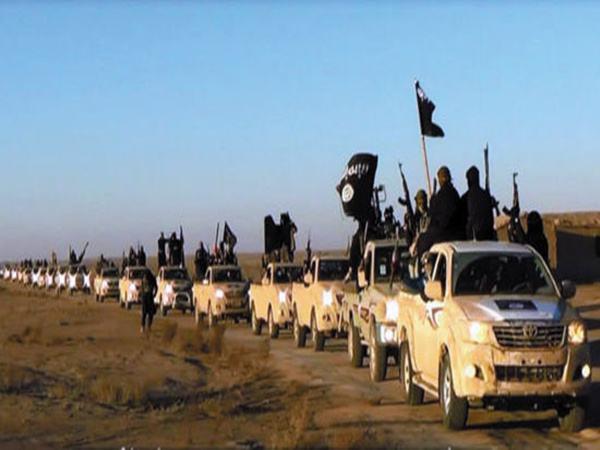环顾世界,局势动荡的地区往往会成为恐怖分子的渊薮。