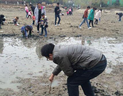 河蚌处理方法图解 河蚌肉哪些部位不能吃
