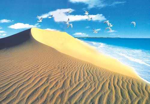 秦皇岛黄金海岸。图片来源网络