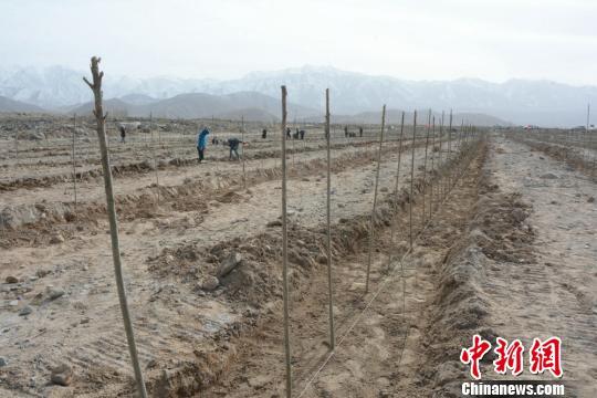肃北人口_肃北蒙古文化推广人赛西雅拉图与您分享 新时代蒙古文化五要素