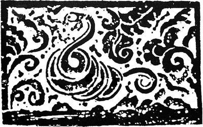 灰色花纹蛇
