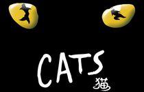 音乐剧《猫》介绍