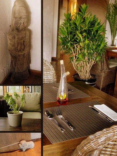 藤编沙发,棉布靠垫,白色阑干,竹草窗帘,古旧木柜当茶几,及肩植物做