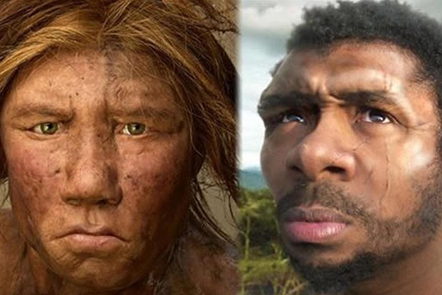 当人类进入欧洲和亚洲后,将尼安德特人作为主要的竞争对手,以及食物来源。在法国西南部莱斯·罗伊斯地区发现的尼安德特人骨骼上残留的刀痕类似于石器时代人类屠杀鹿和其它动物的方式。人类不仅直接食用他们,还把他们的牙齿串成项链。
