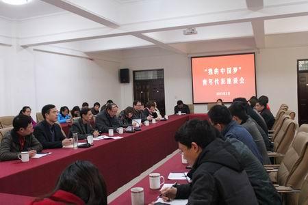 """""""我的中国梦""""青年代表座谈会"""