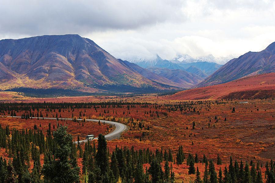 丹那利国家公园(Denali National Park),北美最高峰麦金利峰(Mount McKinley)就坐落在公园内,这里许多地区是永久冻土区,这些地区只有表面很薄的土层能够生长植物,所以这里的植物都不高。在这儿有35种以上的动物,130种以上的鸟类和数百种的植物。