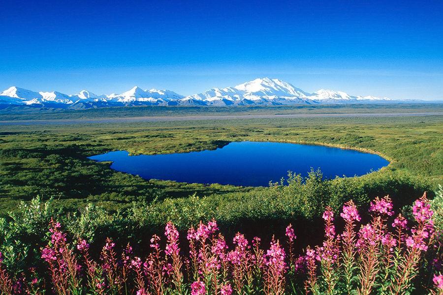 湖是风景中最美的,最有表情的姿容。它是大地的眼睛;望着它的人可以测出他自己天性的深浅。在阿拉斯加,对于远足而来的探险者,你随时都可与大地的眼睛对视,在对方的眼眸中一观自己的天性。