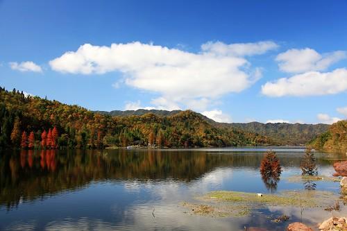 石柱旅游景点:黄水国际民俗生态旅游度假区