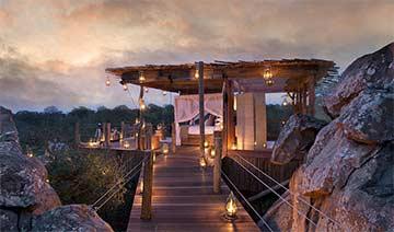 南非推惊险树屋酒店 让游客与野生动物同住