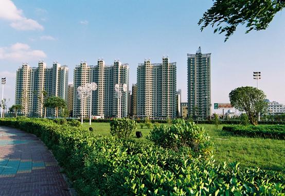 淮北林业生态与经济效益双丰收