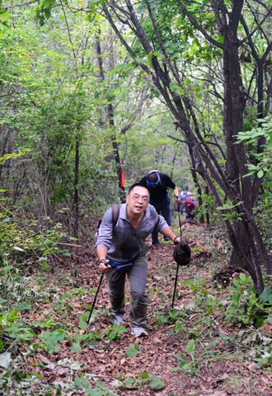 穿越丛林的徒步对于队员们是极大的挑战图片