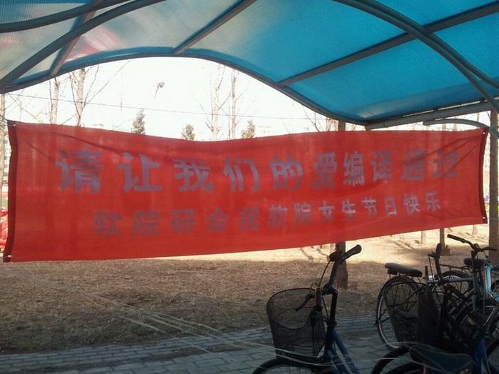 组图:清华大学女生节宣传标语
