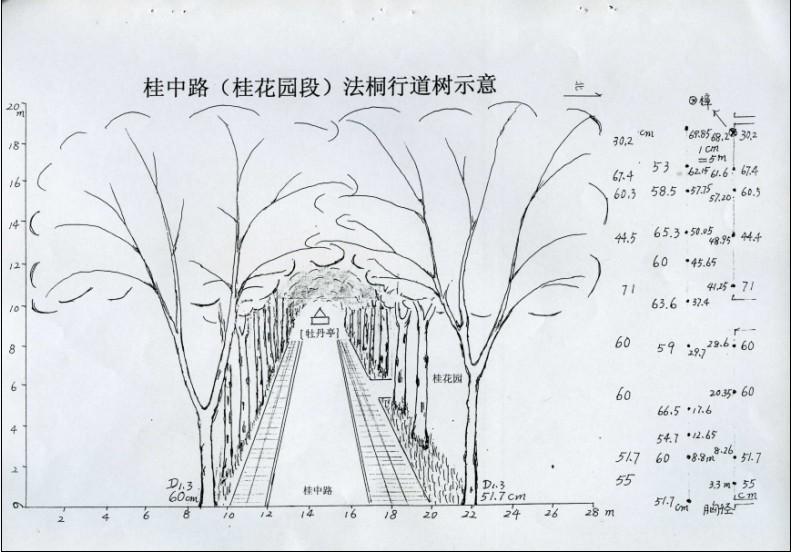 武汉大学建筑手绘